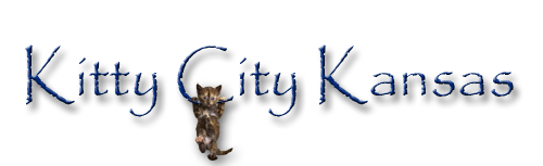 Kitty City Kansas Rescue