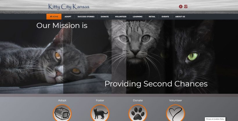 Welcome to the New Kitty City Kansas Website!