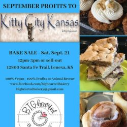Bighearted Bakery Donating 100% Profits to Kitty City for September